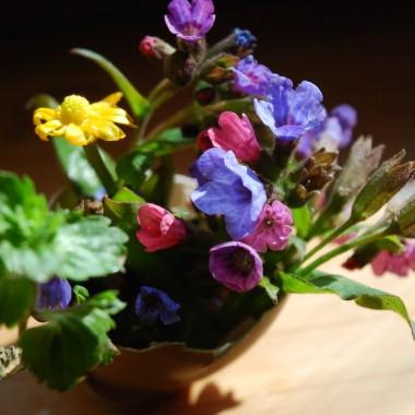 Świat nabiera kolorów, wszystko wokół zaczyna sie zielenić dając radość i chęć ubrania w wiosnę domu, siebie, a nawet talerza :-) Zachęcam do lekkich sałatek z dużą ilością zielonego i zapraszam do sielskiegodomkuwdolinie .