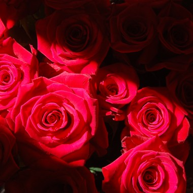 Różano.....