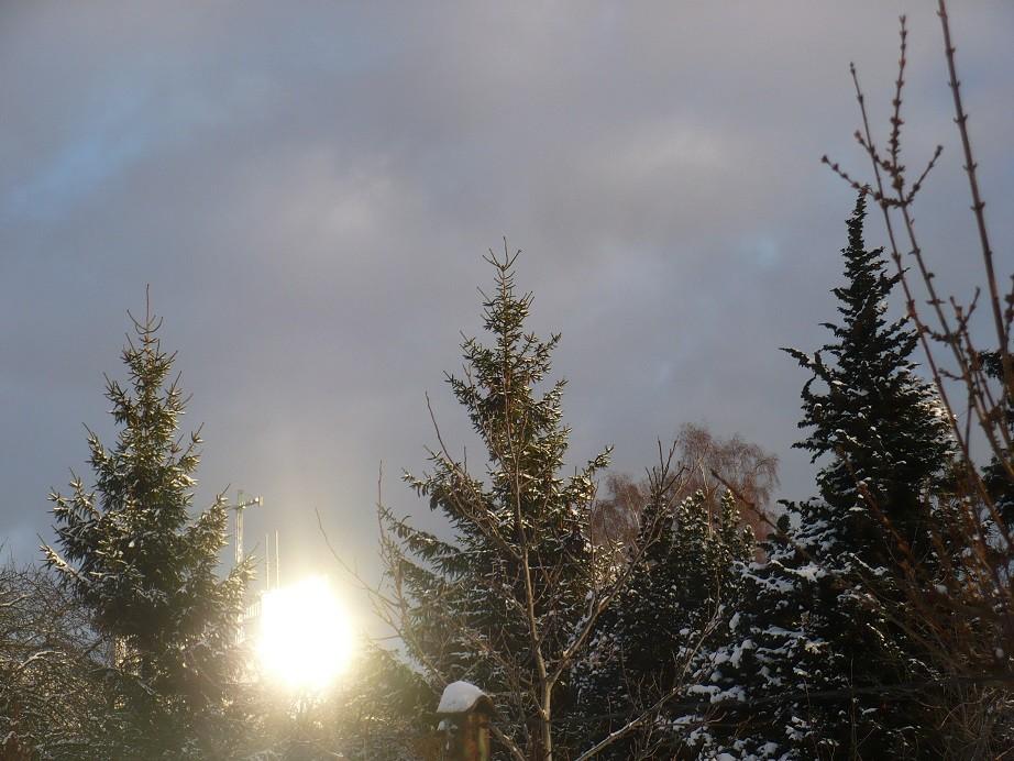 Pozostałe, Lutowa...............zimowa..............z damami.....i panami.. - ........i lśnienie...........