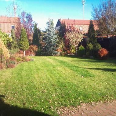 ogród jesień 2012 r.