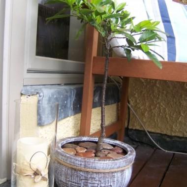 Pojawił się nowy wazon ze świeczką. Przemalowałam też starą doniczkę i przewiązałam pakowym sznurkiem z juty. W doniczce drzewko które trzy razy miało już trafić na śmietnik bo strasznie marniało i ... nagle zaczęło dostawać nowe listki ... zasłużyło na nową doniczkę &#x3B;o)