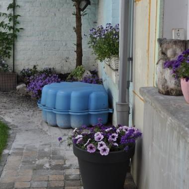 Kwiaty. Nasz mały ogródeczek.