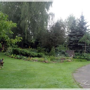 Ogrod skalny przy starej studni