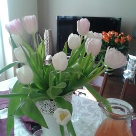 trochę wiosny w domu