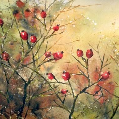 Akwarela - owoce dziko rosnące