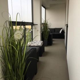 Nowoczesność i prostota - apartament z trawami i storczykami