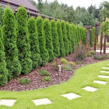 Ogrody i dekoracje szczytno