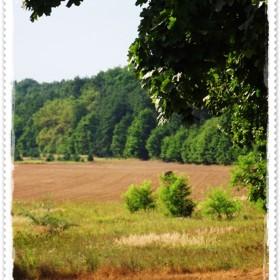 ...radosne chwile obcowania z naturą&#x3B;&#x3B;