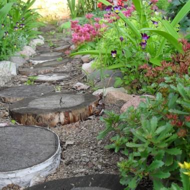 Lato u mnie w ogródku.