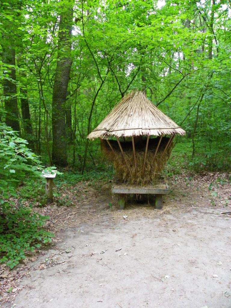 Pozostałe, Arboretum w Gołuchowie - Park i zabudowania cz 1 - Gołuchów