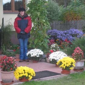 Ogród siostry