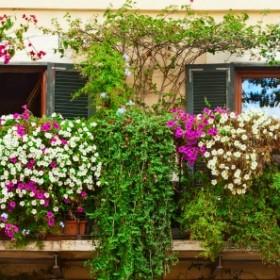 Balkonowe hity na wiosnę!