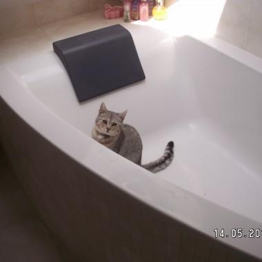 Misia w wannie