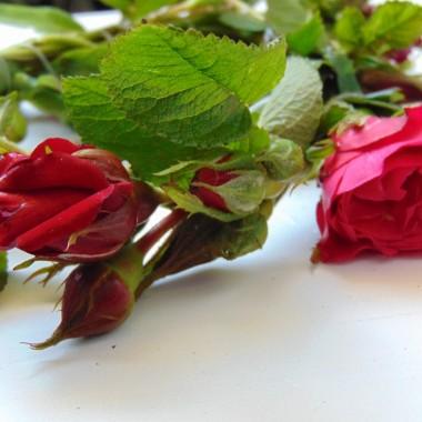 Czas na róże................