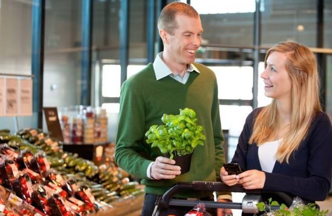 Dlaczego zioła z supermarketów tak szybko usychają?