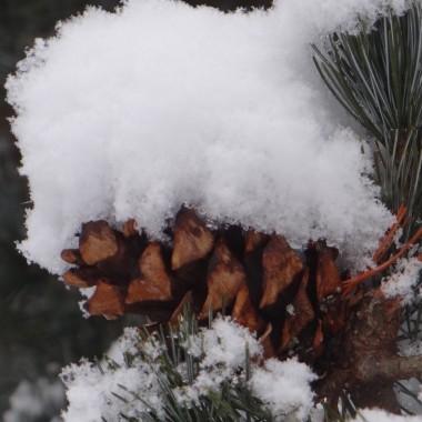 Zimowo~wiosennie!