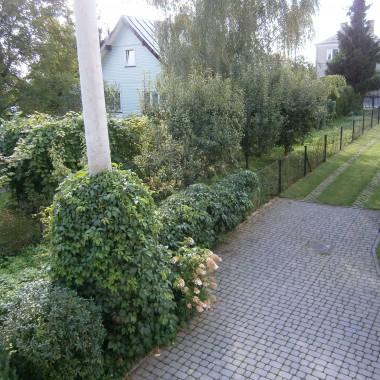 Wrześniowy ogród