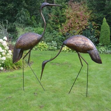 Ptaki do ogrodu