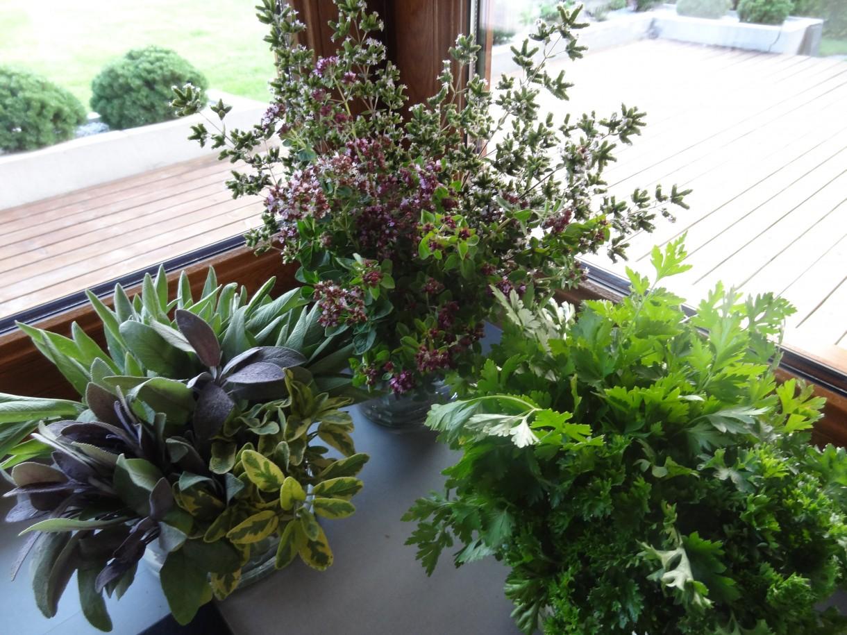Rośliny, Dary ogrodu - Trzeci wazon to kwitnący tymianek.