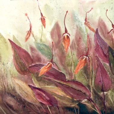 Akwarela - kwiaty