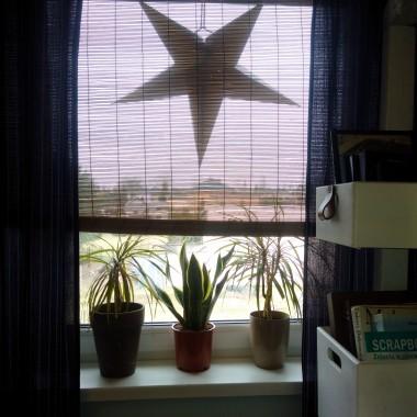 Parapet w sypialni i mało wymagające, a sporo dające rośliny.