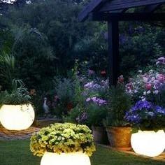 Swiecące kule w ogrodzie