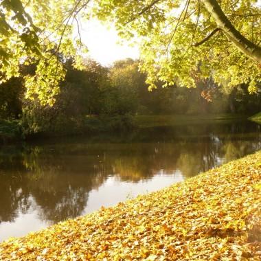 .............i jesień nad stawem.......................