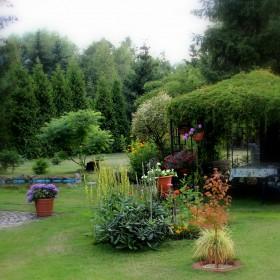 Miododajny ogród!