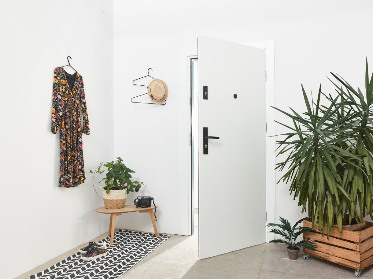 Przedpokój, INTER DOOR - drzwi z natury