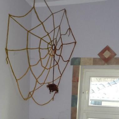 mam i pajęczynę- to podobno -dostatek