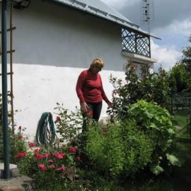Wiosna  i  lato     w moim wiejskim    ogrodzie ,,