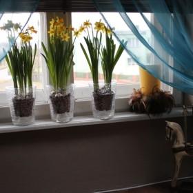 Wiosenne dodatki