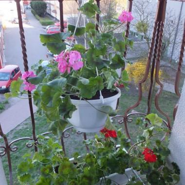 Mój mały balkonik