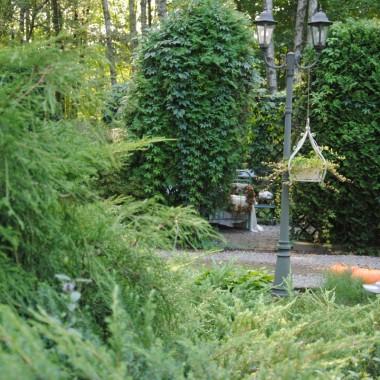 """Chciałam Was serdecznie zaprosić na program tv z mojego leśnego ogrodu :) Pod koniec sierpnia gościłam ekipę telewizyjną z programu """"Rok w ogrodzie extra"""" .W najbliższą sobotę 17.11.w programie 1 TVP  o godz.7.50 będzie emisja odcinka nakręconego u mnie.W poniższej galerii zdjęcia robione tuż przed wizytą ekipy :).....czyli wspomnienie lata :)ps.Ponieważ pytacie gdzie można teraz zobaczyć ten program ,więc podaję link : https://vod.tvp.pl/video/rok-w-ogrodzie,extra-17112018,39671452"""