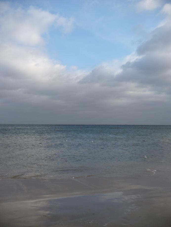 Pozostałe, Lutowa...............zimowa..............z damami.....i panami.. - .........i spokojne morze...............pozdrowienia dla Was znad morza ślę :)