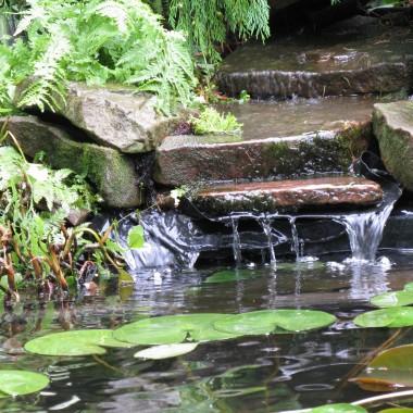 Ogród  w stylu japońskim.