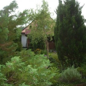 Ogród o zmroku