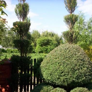 Ogród nagrodzony- jako najpiękniejszy ogród- przez Urzad Miasta