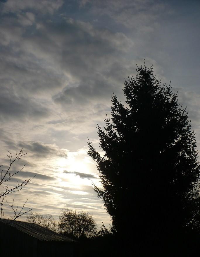 Pozostałe, Listopadowe małe radości................ - ...........i wstaje nowy dzień..........