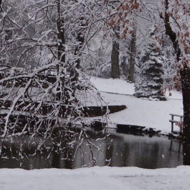 Jednego dnia snieg pada..a drugiego slonko swieci i wiosna sie do nas skrada.....