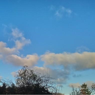 ................i błękitne niebo............
