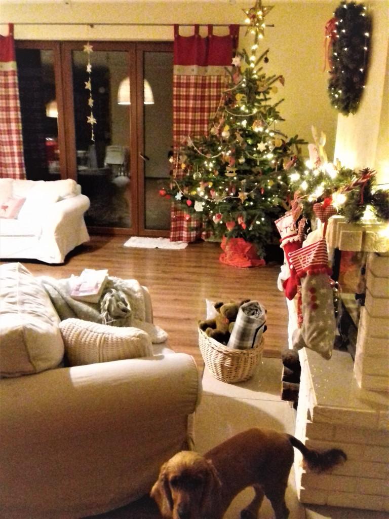 Salon, Ksiązki świąteczne-KOCHAM:)