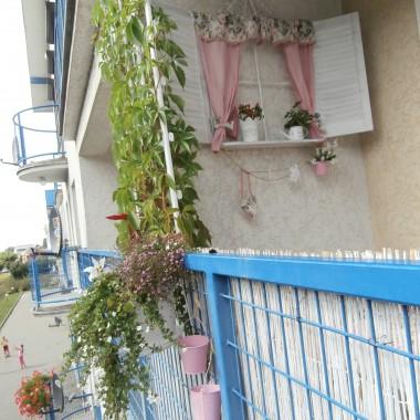 Sierpniowy balkonik :)