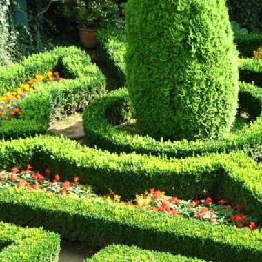 Ogród w zamku w Pieskowej Skale