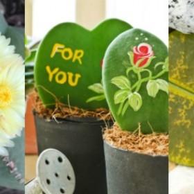 Kiedy masz dość storczyków… Dziwne rośliny domowe, o których istnieniu nie miałeś pojęcia
