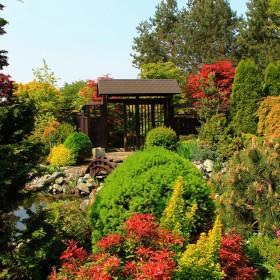 Zaczarowany ogród...