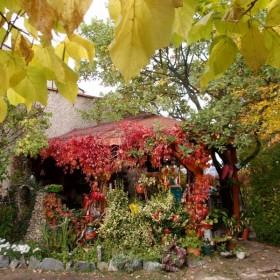 Ogród jesienny