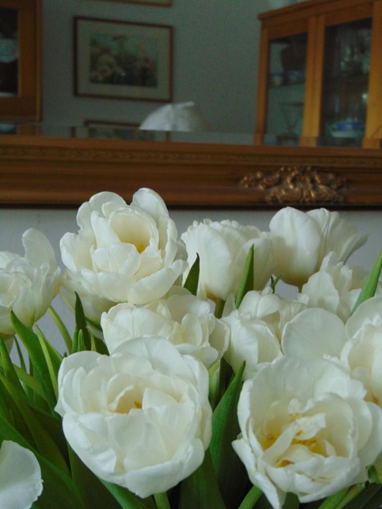 Pozostałe, Wiosennie............ - ..........i tulipany.................pachną w całym domu..............