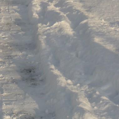 ..............i biały śnieg...............