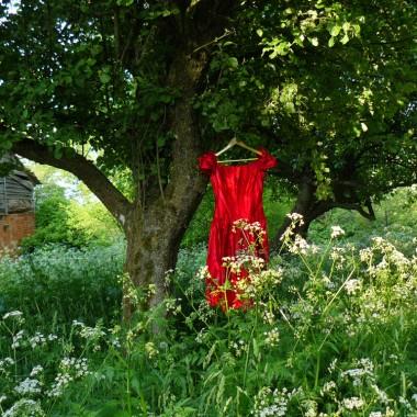 po prostu sukienka na drzewie, kiedy ubrania suszą się na powietrzu nosi się je dużo przyjemniej, pachną wiatrem.